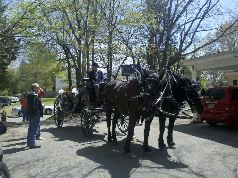 horse-drawn-carriage-at-magnolias